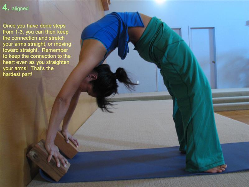 Urdhva dhanurasana http elsieyogakula wordpress com 2006 10